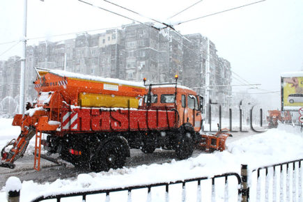 Снегорини