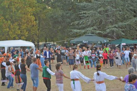 Фестивал