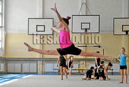 Гимнастичка