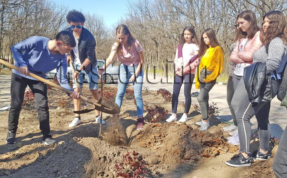 Златаровци посрещнаха пролетта със засаждане на дръвчета в Дома за стари хора