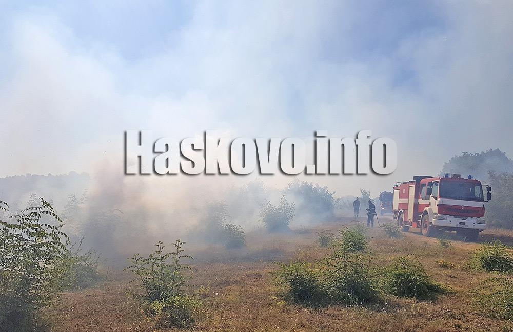 8 000 декара обхвана пожарът край Любеново, в готовност е хеликоптер